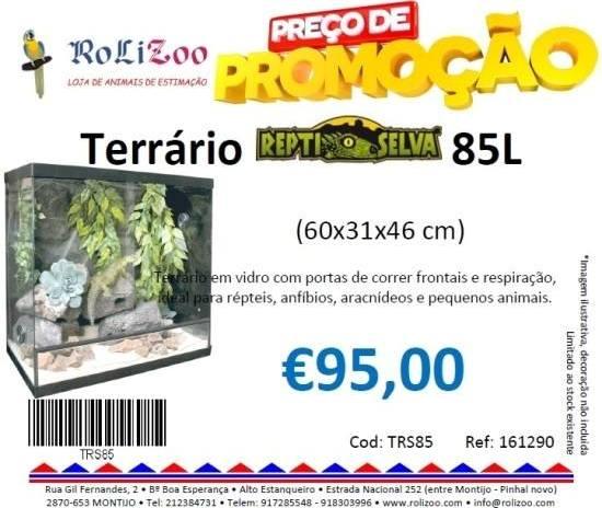 TRS85
