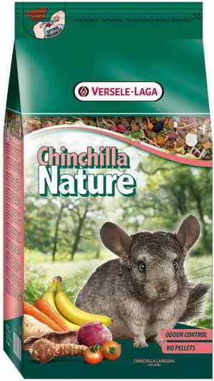 Chinchilla Nature