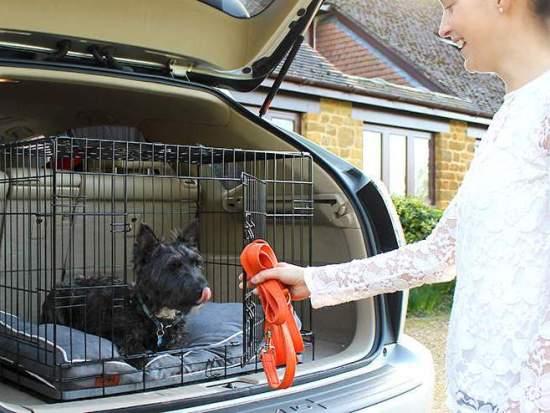 Dog Crate Double Door