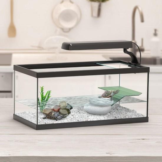 Tartarugueiras em Vidro